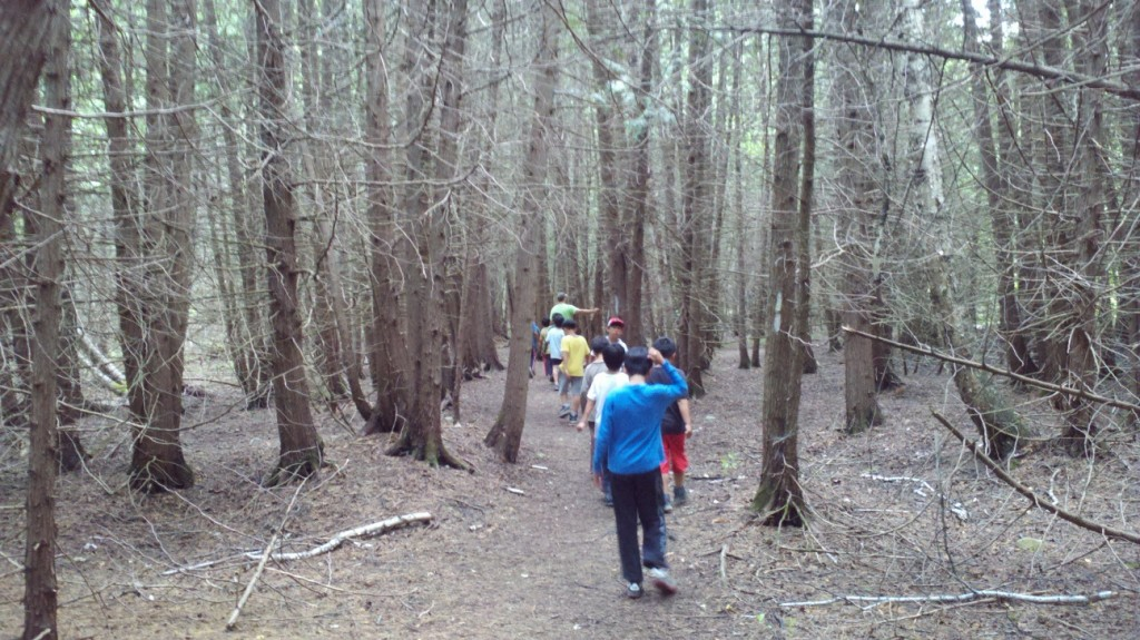 Hiking the Lookout Trail in Balsam Lake Provincial Park