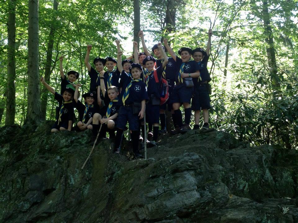 Timber Wolves climb a rock
