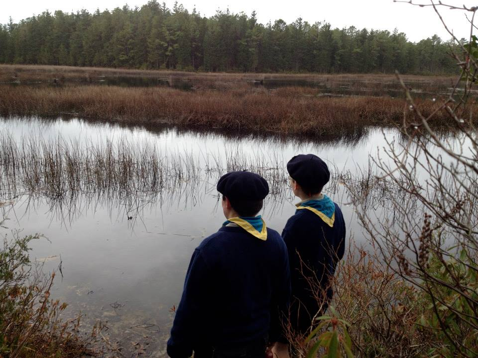 Sixer and seconder examining flora and fauna
